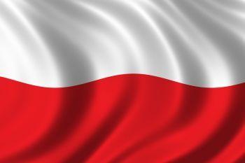 Święto Niepodległości w Gostyniu i Murowanej Goślinie